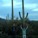 Cacti posing