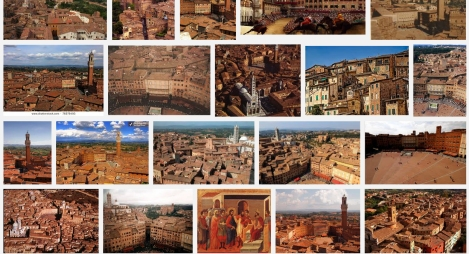 Siena Image Search Screenshot