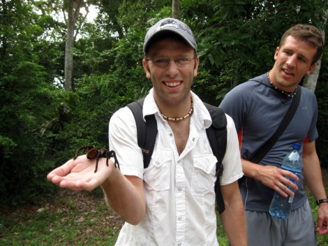 Tarantula in Tika