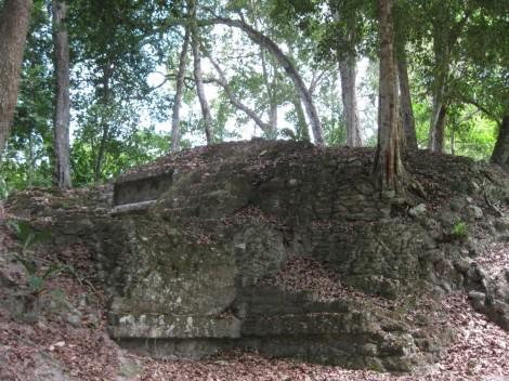 Tikal unexcavated ruins, Guatemala