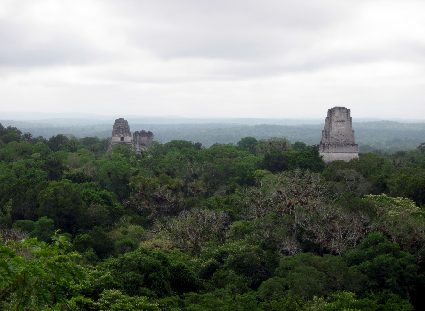 Tikal Guatemala Star Wars Star Wars Tikal Scene