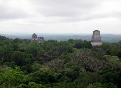 Star Wars Tikal Scene