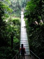 A walking bridge over the river.