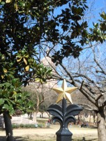 2014 - Austin - State Capital Star
